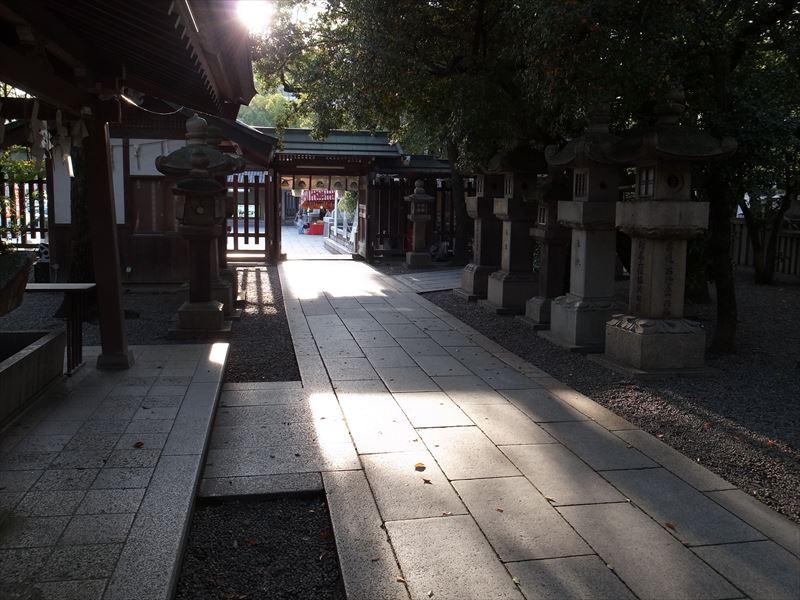 20151121-Minatogawa Shrine2-8