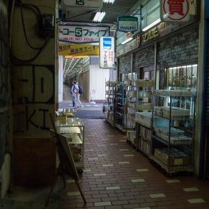 【旅】モトコー5(モトコーファイブ) «元町高架通商店街(モトコー)»:兵庫県 -2016/5/15-